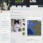 site chat perdu belgique nantes